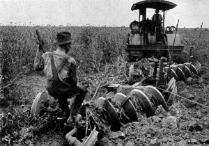 Agriculture_(Plowing)